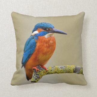 Perching Kingfisher Cushion