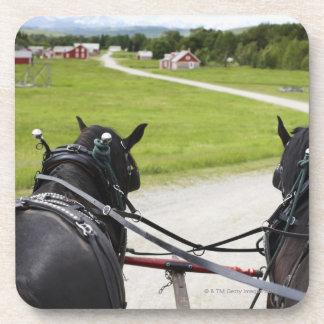 Perchon horses pulling cart  against historic drink coaster