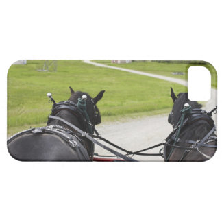 Perchon horses pulling cart  against historic iPhone 5 case