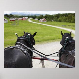 Perchon horses pulling cart  against historic poster