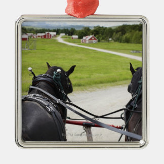 Perchon horses pulling cart  against historic Silver-Colored square decoration