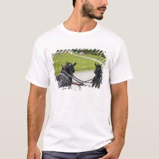 Perchon horses pulling cart  against historic T-Shirt