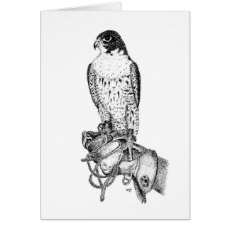 Peregrine Falcon Birthday Card