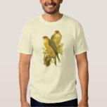 Peregrine Falcon (Falco peregrinus babylonicus) Tee Shirt