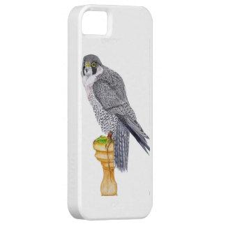 Peregrine Falcon I phone case