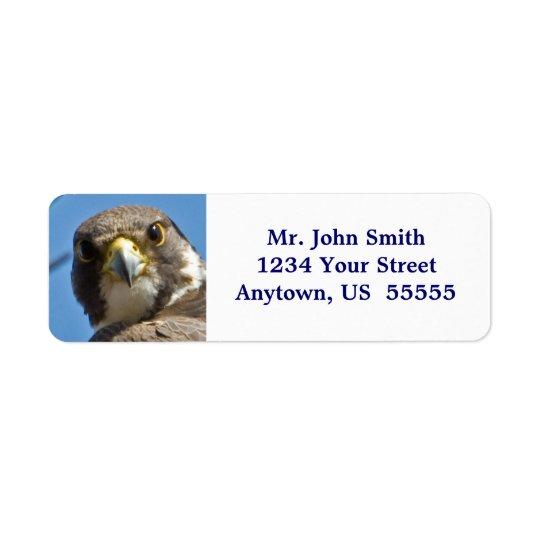 Peregrine Falcon Label