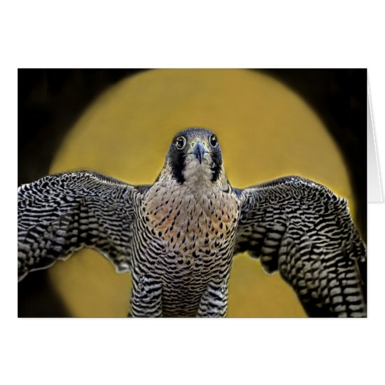 Peregrine Falcon Moon Rising Card