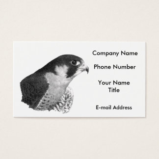 Peregrine Falcon-Pencil Business Card