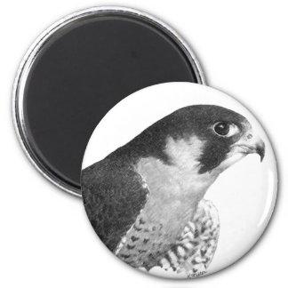 Peregrine Falcon-Pencil Magnet