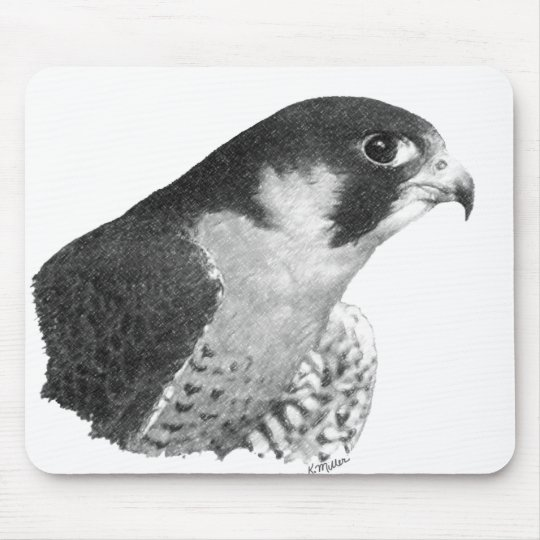 Peregrine Falcon-Pencil Mouse Mat