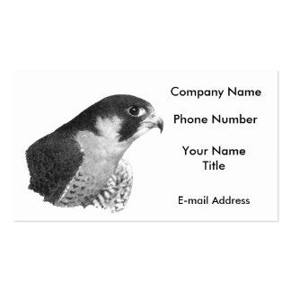 Peregrine Falcon-Pencil Pack Of Standard Business Cards