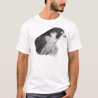 Peregrine Falcon-Pencil T-Shirt