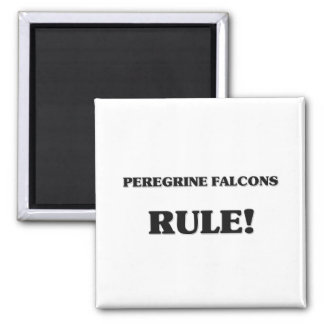 Peregrine Falcons Rule Refrigerator Magnets