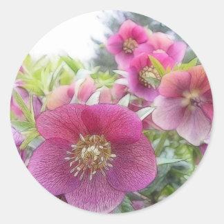 Perennial Plants - Purple Hellebore Round Sticker