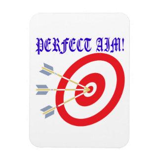 Perfect Aim 2 Magnet