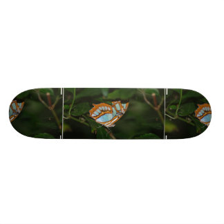 Perfect Camoflage Butterfly Wings Skateboard