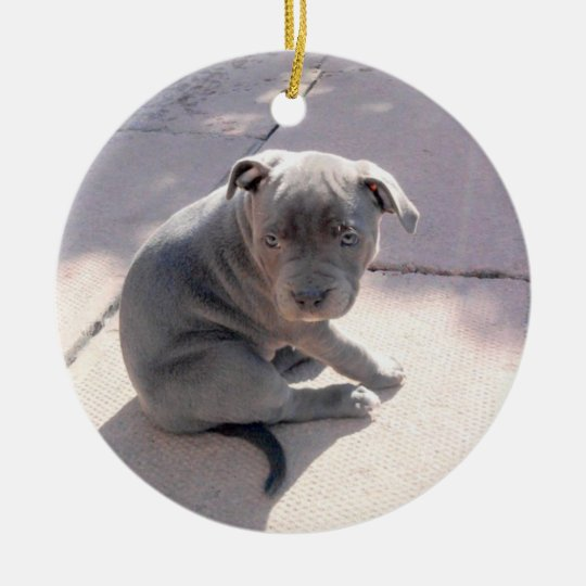 Perfect gift for the staffordshire bull terrier lo