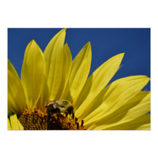 Perfect Morning for Bees and Flowers Poster