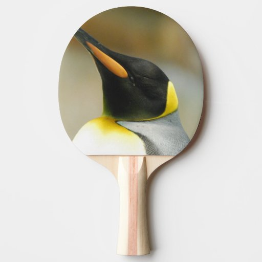 Perfect Penguin Ping Pong Paddle