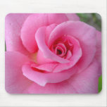 Perfect Pink Rose Mouse Pad