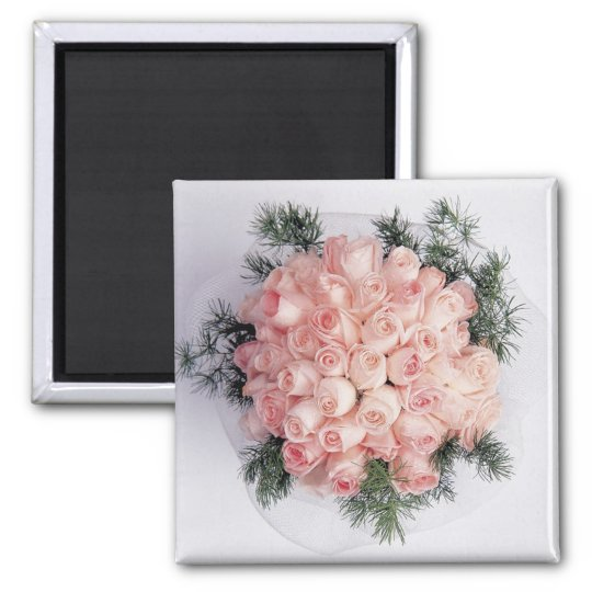 Perfect Pink Roses Magnets