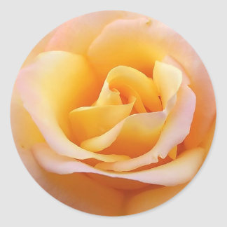 Perfect Rose Classic Round Sticker