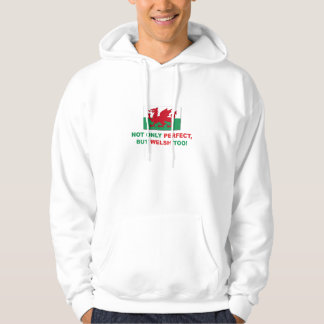 Perfect Welsh Pullover