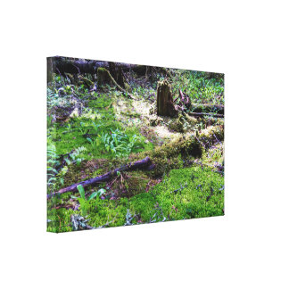 Perfect Woods Ambiance Canvas Print
