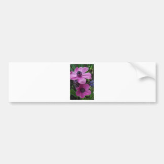 Perfectly Pink Anemone Blossom Bumper Sticker