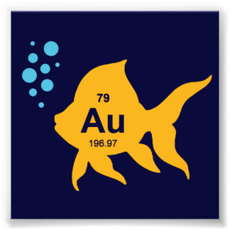 Periodic Table Elemental Gold Fish Photograph