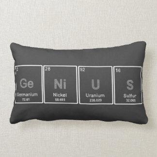 Periodic Table GeNiUS pillow