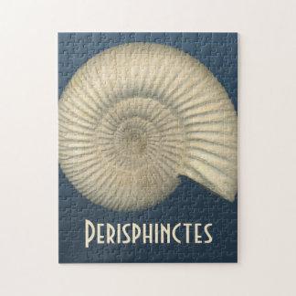 Perisphinctes Ammonite Jigsaw Puzzles