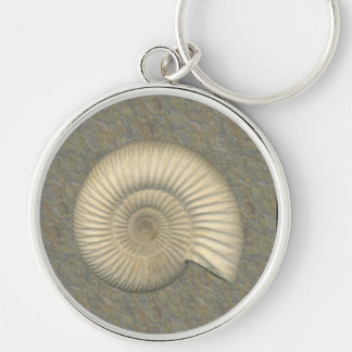 Perisphinctes Ammonite Key Ring