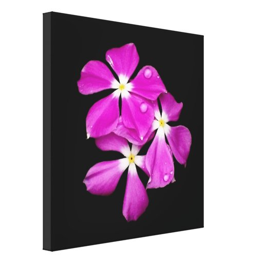 'Periwinkle Flowers After Rainfall' Gallery Wrap Canvas