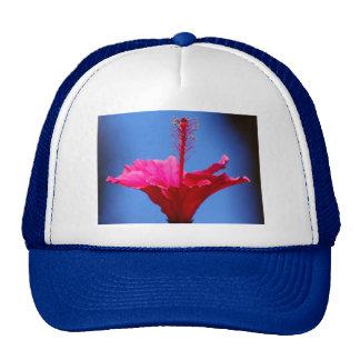 Perky Pink Trucker Hat