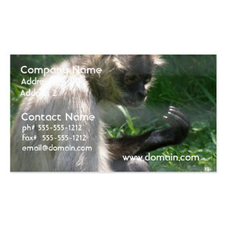 Perplexed Spider Monkey Business Cards