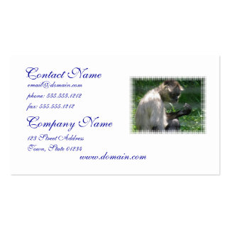 Perplexed Spider Monkey Pack Of Standard Business Cards