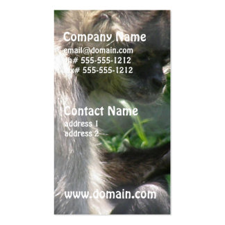 Perplexed Spider Monkey Double-Sided Standard Business Cards (Pack Of 100)