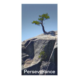 Perseverance ~ Card Personalized Photo Card