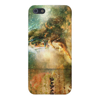 Persevere iPhone 5 Covers