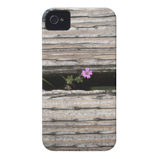 Perseverence iPhone 4 Case