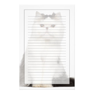 Persian (10 months old) sitting stationery