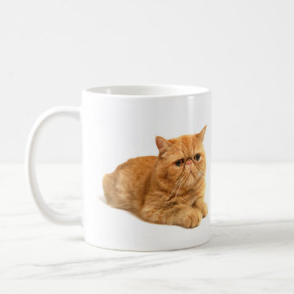 Persian cat coffee mug