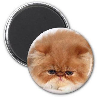 Persian Cat Face 6 Cm Round Magnet
