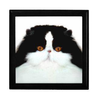 Persian cat face gift box