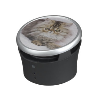 Persian Cat, Felis catus, Brown Tabby, Kitten, Bluetooth Speaker