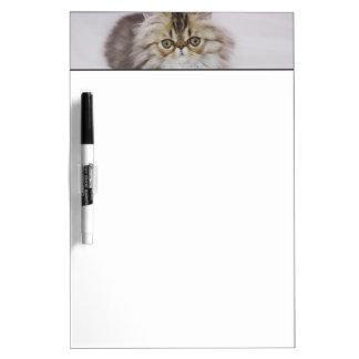 Persian Cat, Felis catus, Brown Tabby, Kitten, Dry Erase Board