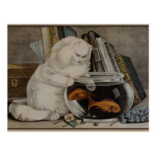 Persian Cat Fishing Postcard