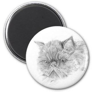 persian cat refrigerator magnets