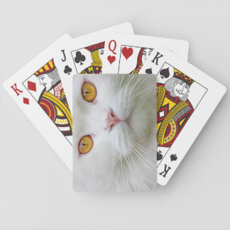 Persian Cat Playing Card
